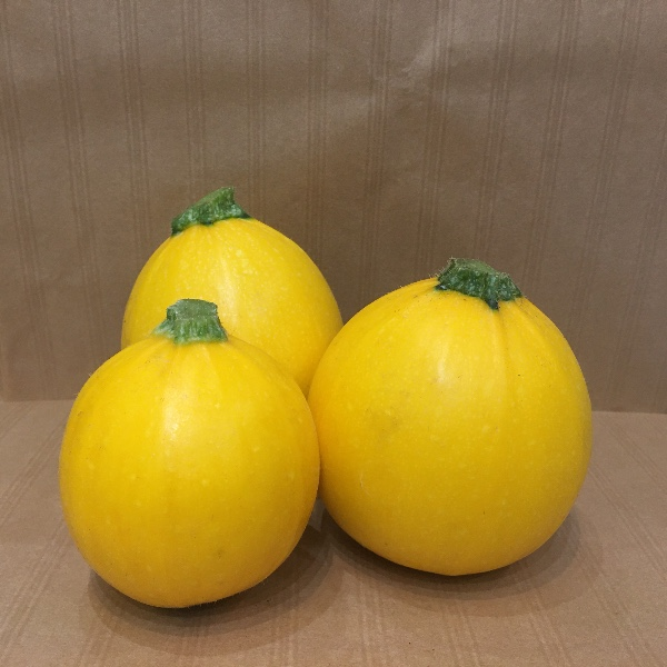 Courgette jaune ronde